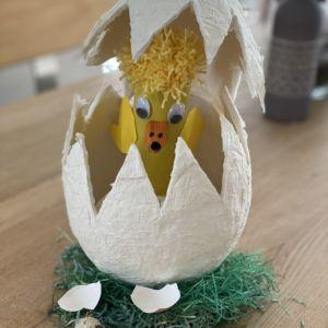 Das Küken schlüpft aus dem Ei