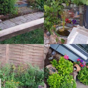 Natur im eigenen Garten